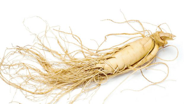 Le Ginseng