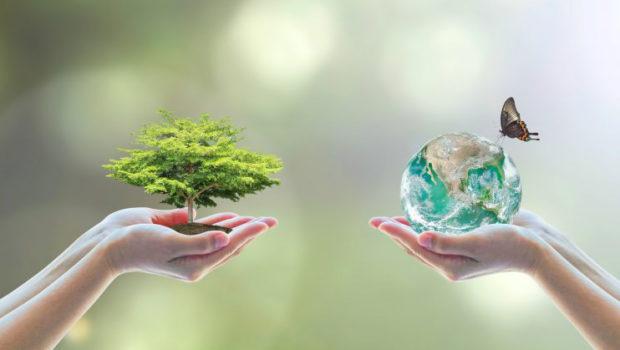 L'écologie vitale globale